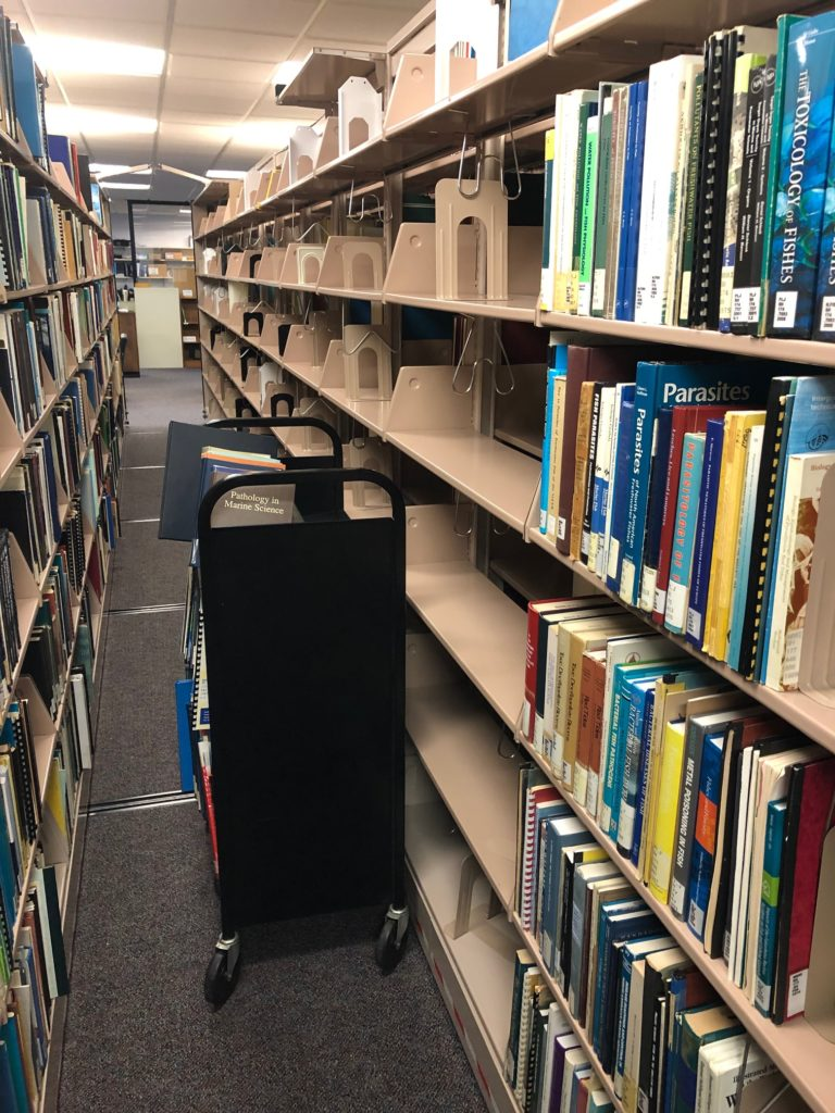 Book cart in the stacks